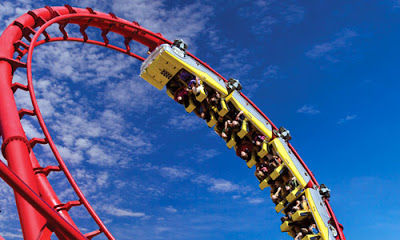 Surviving the Parenting Roller Coaster Ride